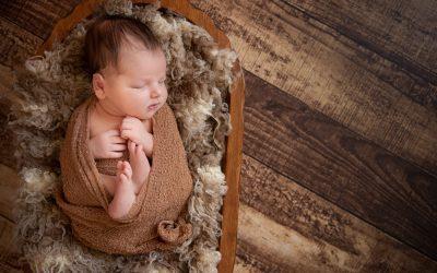 Baby B's newborn portrait session