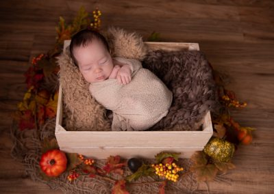 newborn baby wrapped in wooden box with autumnal decoration