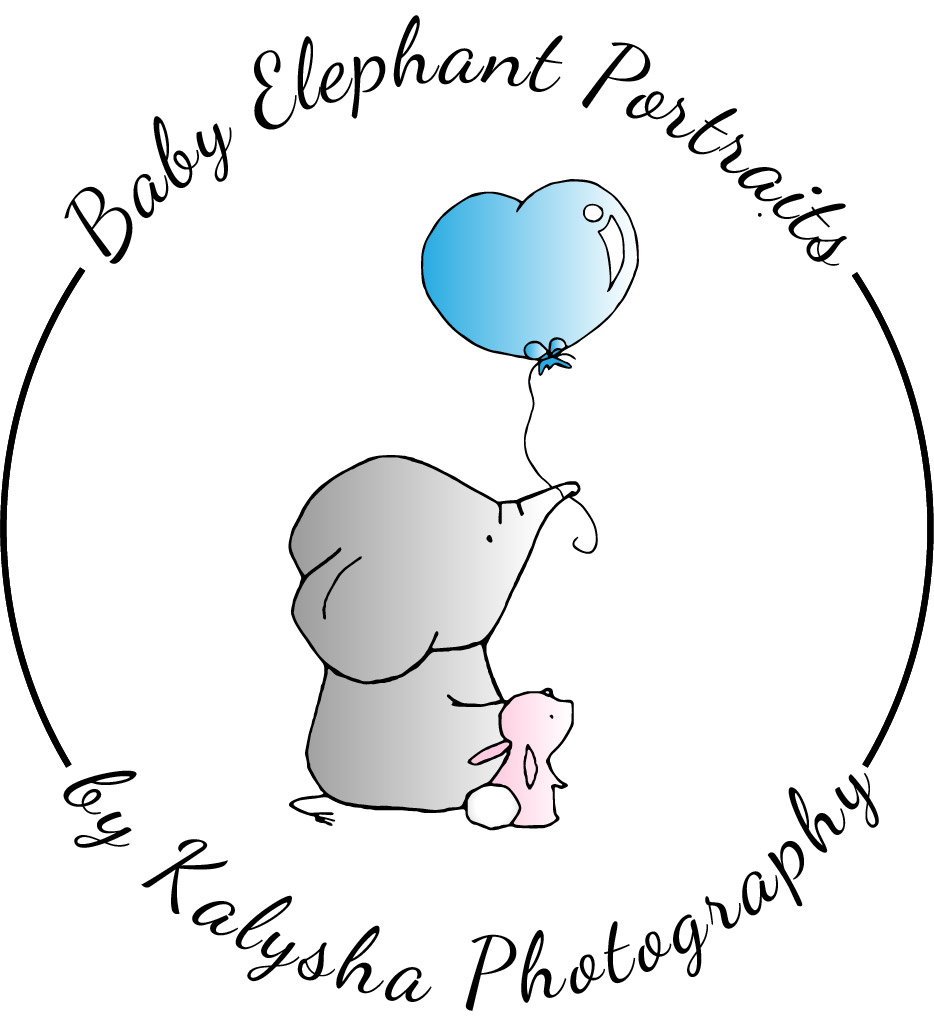 Baby Elephant Portraits