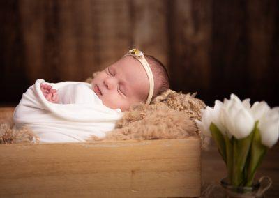 newborn baby wooden crate white tulips